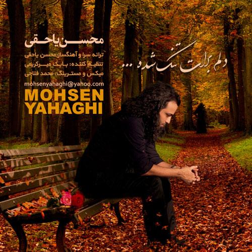 دانلود آهنگ جدید محسن یاحقی به نام دلم برات تنگ شده