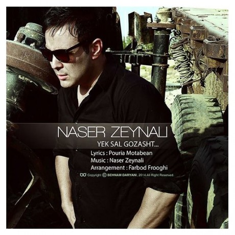 دانلود آهنگ جدید ناصر زینالی به نام یک سال گذشت
